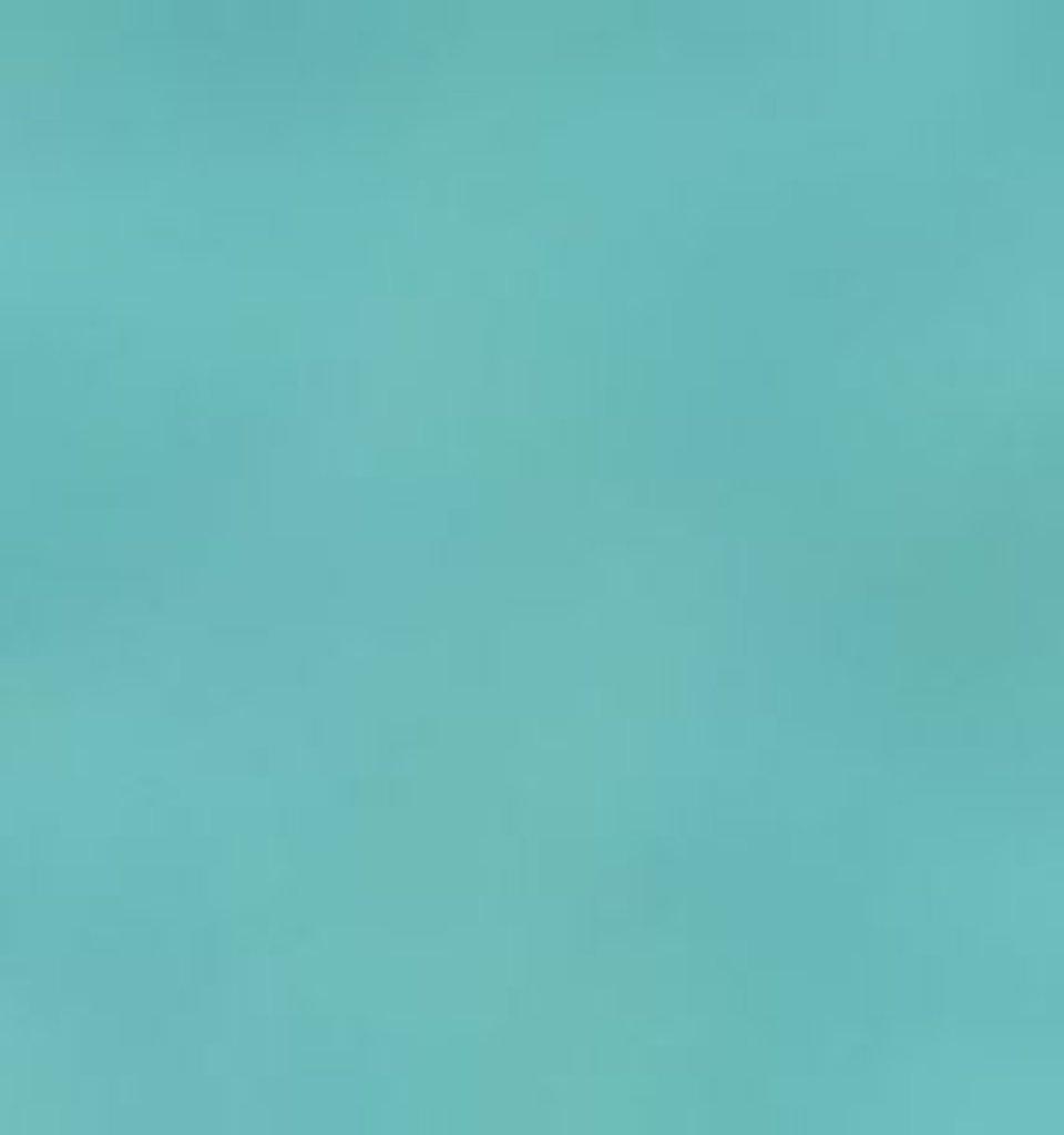 Бумага для пастели LANA: LANA Бумага для пастели,160г, 21х29,7, мята, 1л. в Шедевр, художественный салон