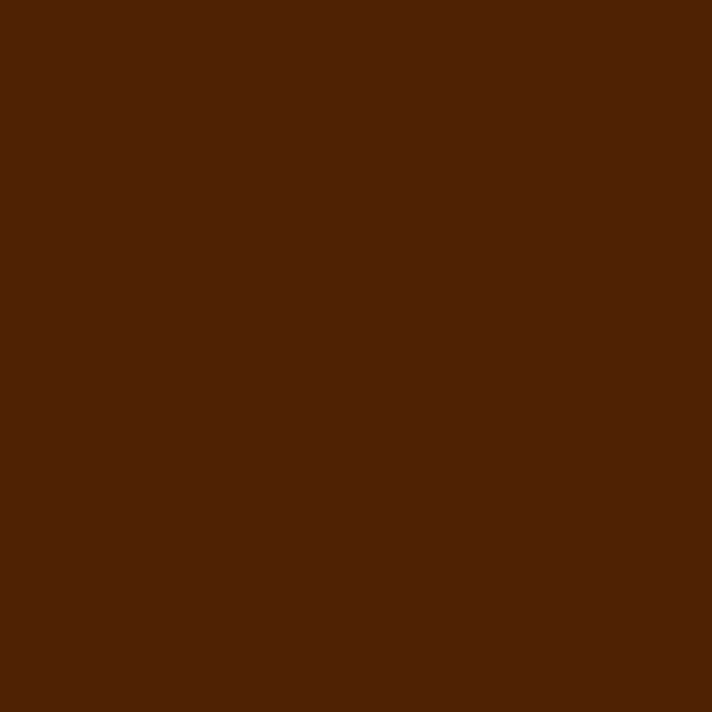 Бумага для пастели LANA: LANA Бумага для пастели,160г, 21х29,7, темно-коричневый, 1л. в Шедевр, художественный салон