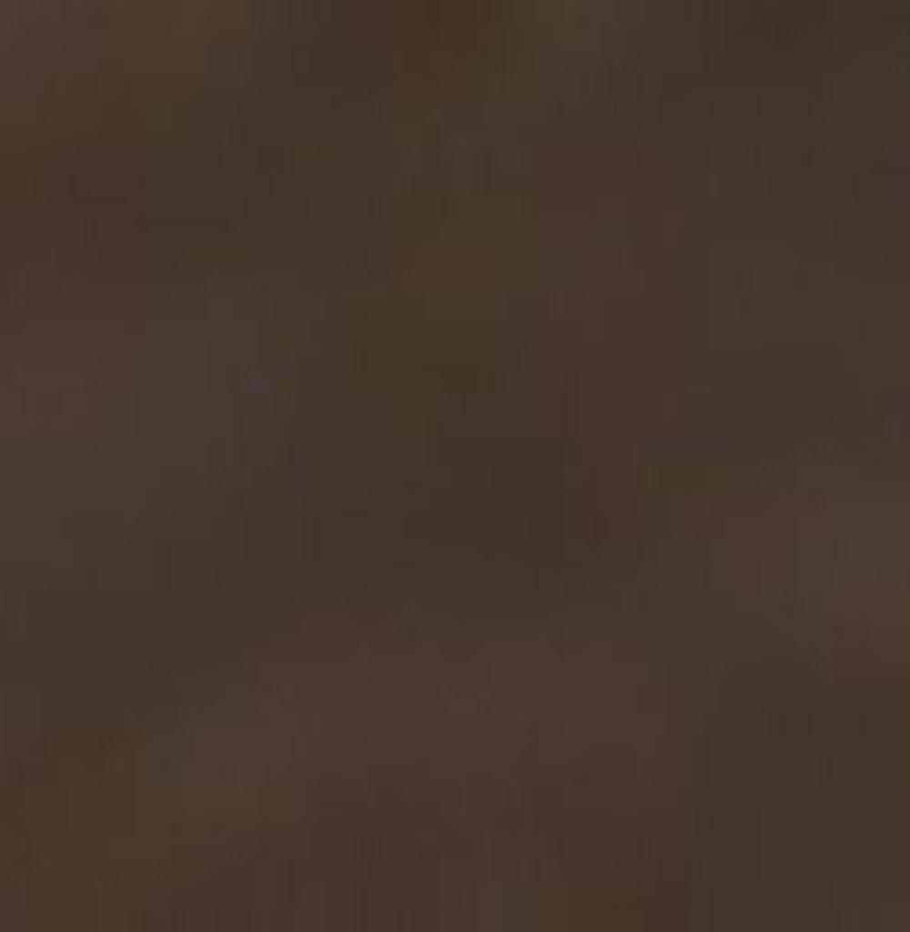 Бумага для пастели LANA: LANA Бумага для пастели,160г, 21х29,7, мокко, 1л. в Шедевр, художественный салон