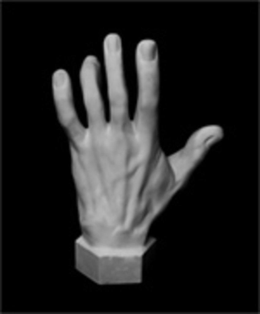 Гипсы: Кисть вертикальная, гипс в Шедевр, художественный салон