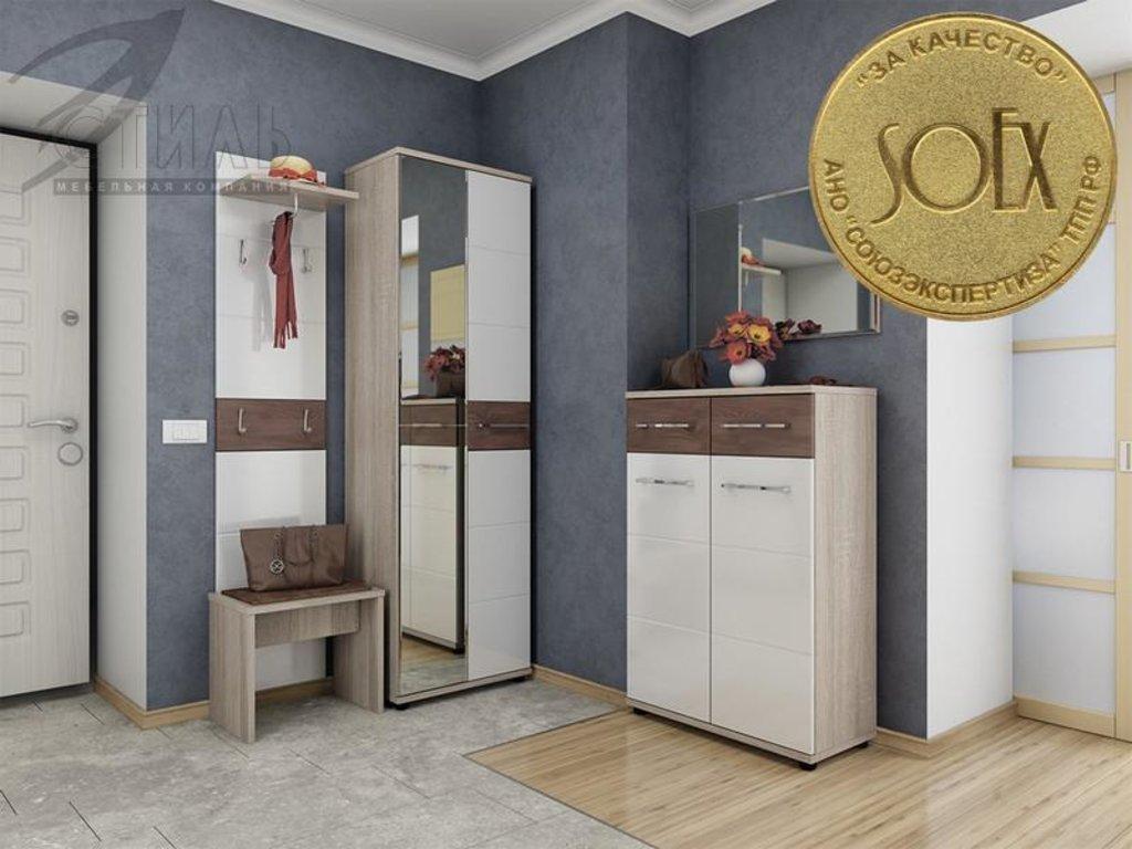 Мебель для прихожей Оскар - 9: Зеркало Оскар - 9 в Диван Плюс