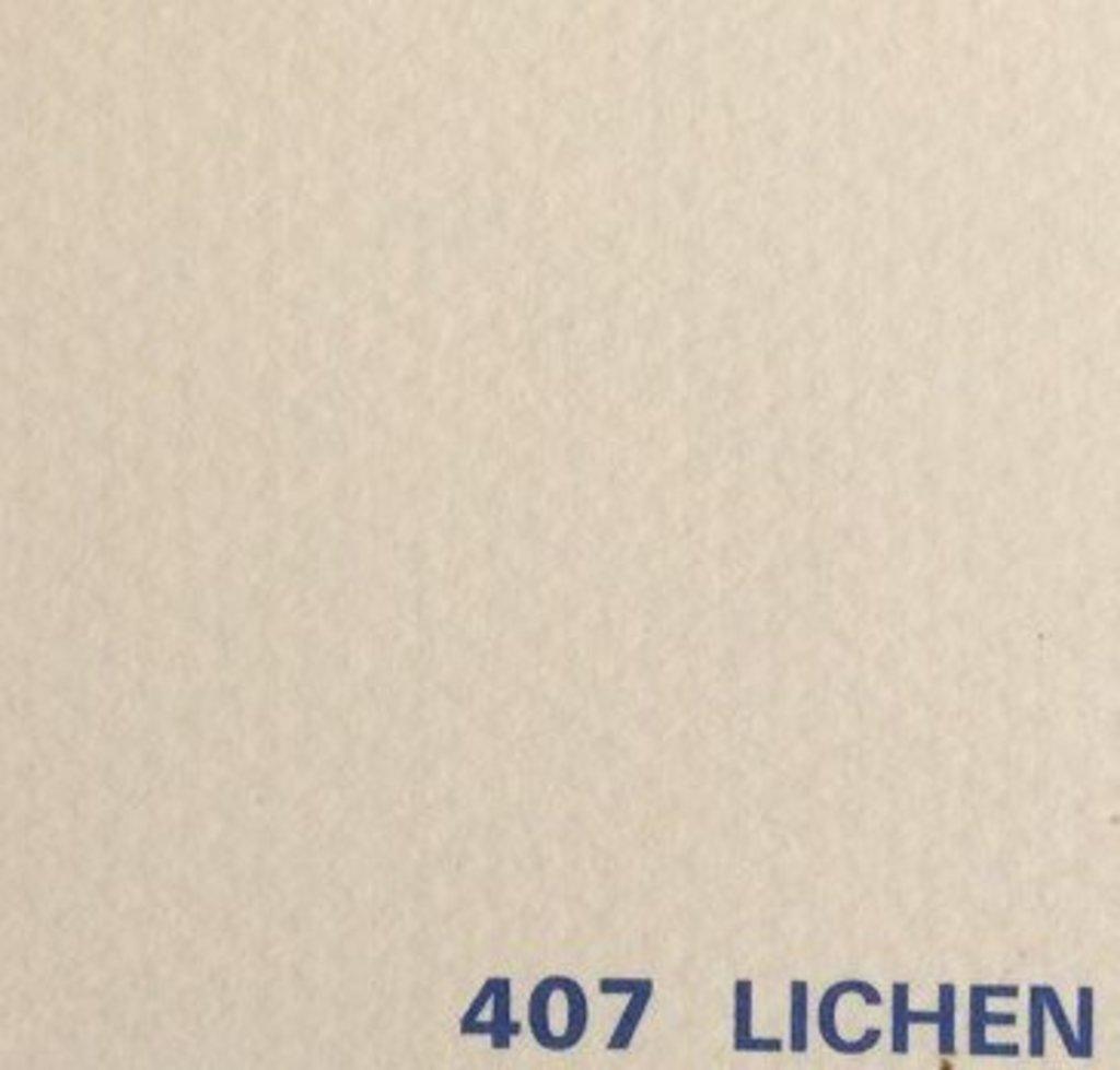 Бумага для пастели CANSON: Бумага для пастели Mi-Teintes 160г/м.кв 75*110см №407 Кремовый,1 лист в Шедевр, художественный салон