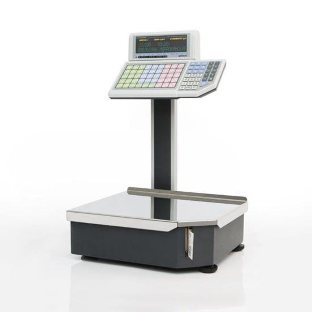 Весы с печатью этикеток: ШТРИХ-ПРИНТ 4.5 весы с печатью этикеток в Рост-Касс