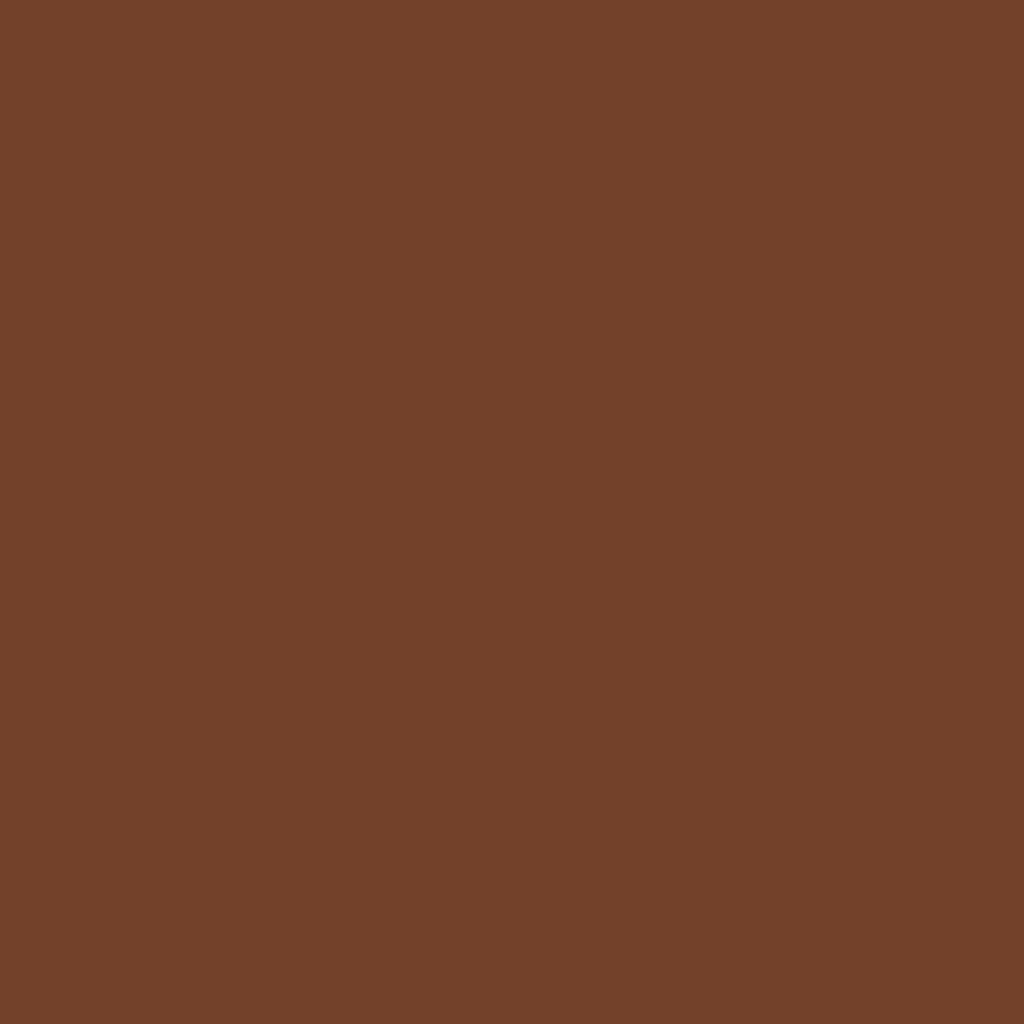 Бумага цветная 50*70см: FOLIA Цветная бумага, 300г/м2 50х70, коричневый шоколад 1лист в Шедевр, художественный салон