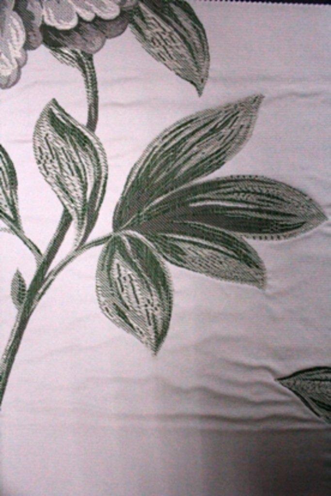 Портьерные ткани: Camellia в Салон штор, Виссон