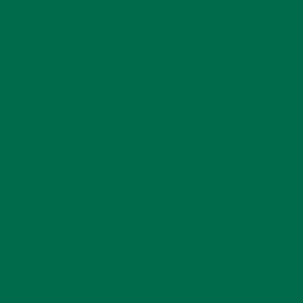 Бумага цветная 50*70см: FOLIA Цветная бумага, 300г/м2 50х70, зелёная ель 1лист в Шедевр, художественный салон