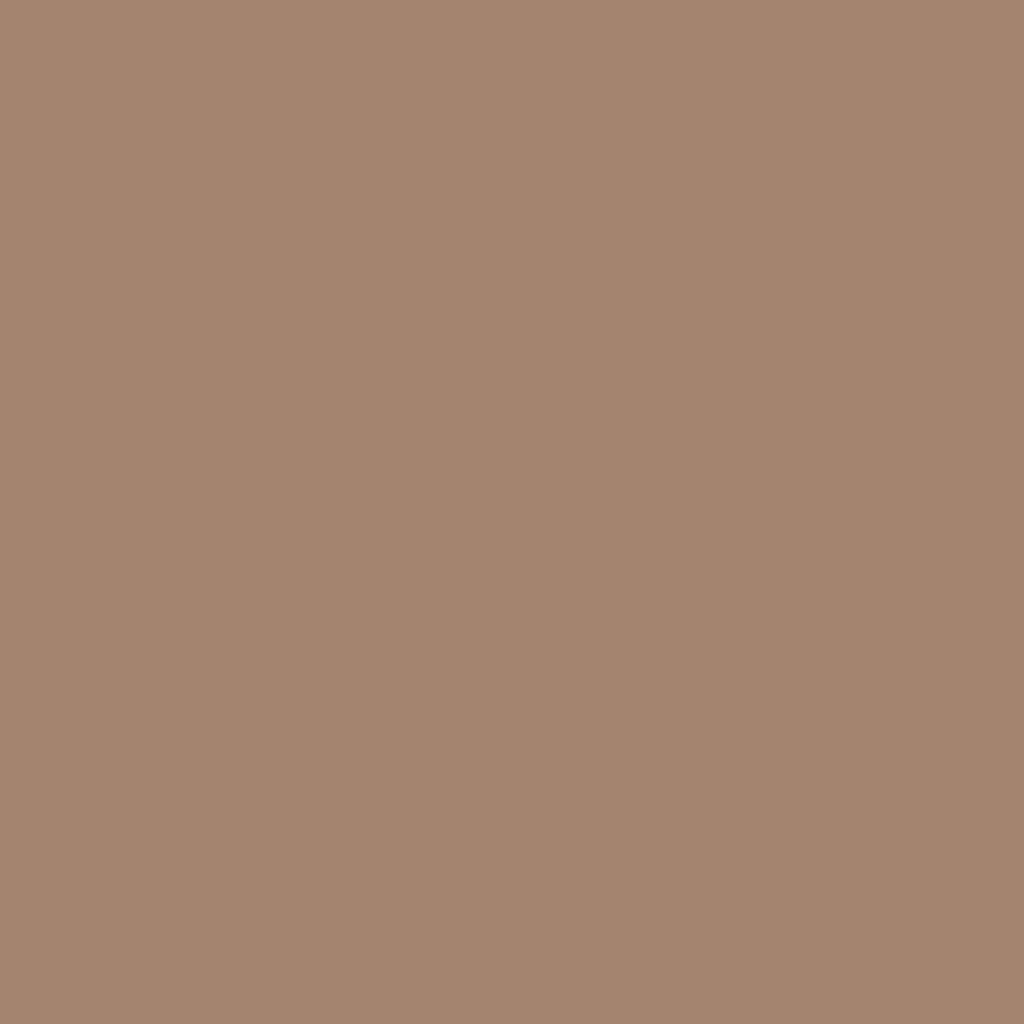 Бумага цветная А4 (21*29.7см): FOLIA Цветная бумага, 300г, A4, светло-коричневый, 1 лист в Шедевр, художественный салон