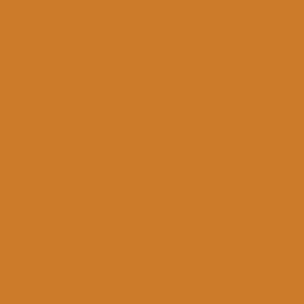 Бумага цветная А4 (21*29.7см): FOLIA Цветная бумага, 300г, A4, терракота, 1 лист в Шедевр, художественный салон