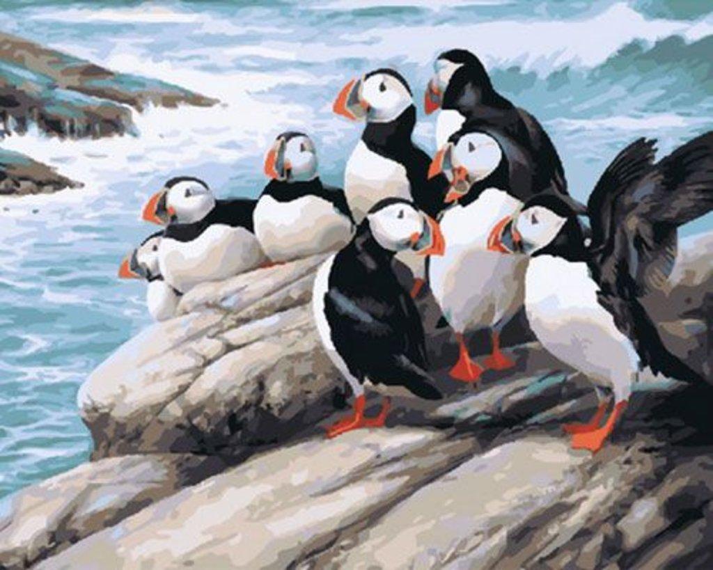 Картины по номерам: Картина по номерам Paintboy 40*50 Наблюдаем за волнами GX31357 Эксклюзив! в Шедевр, художественный салон