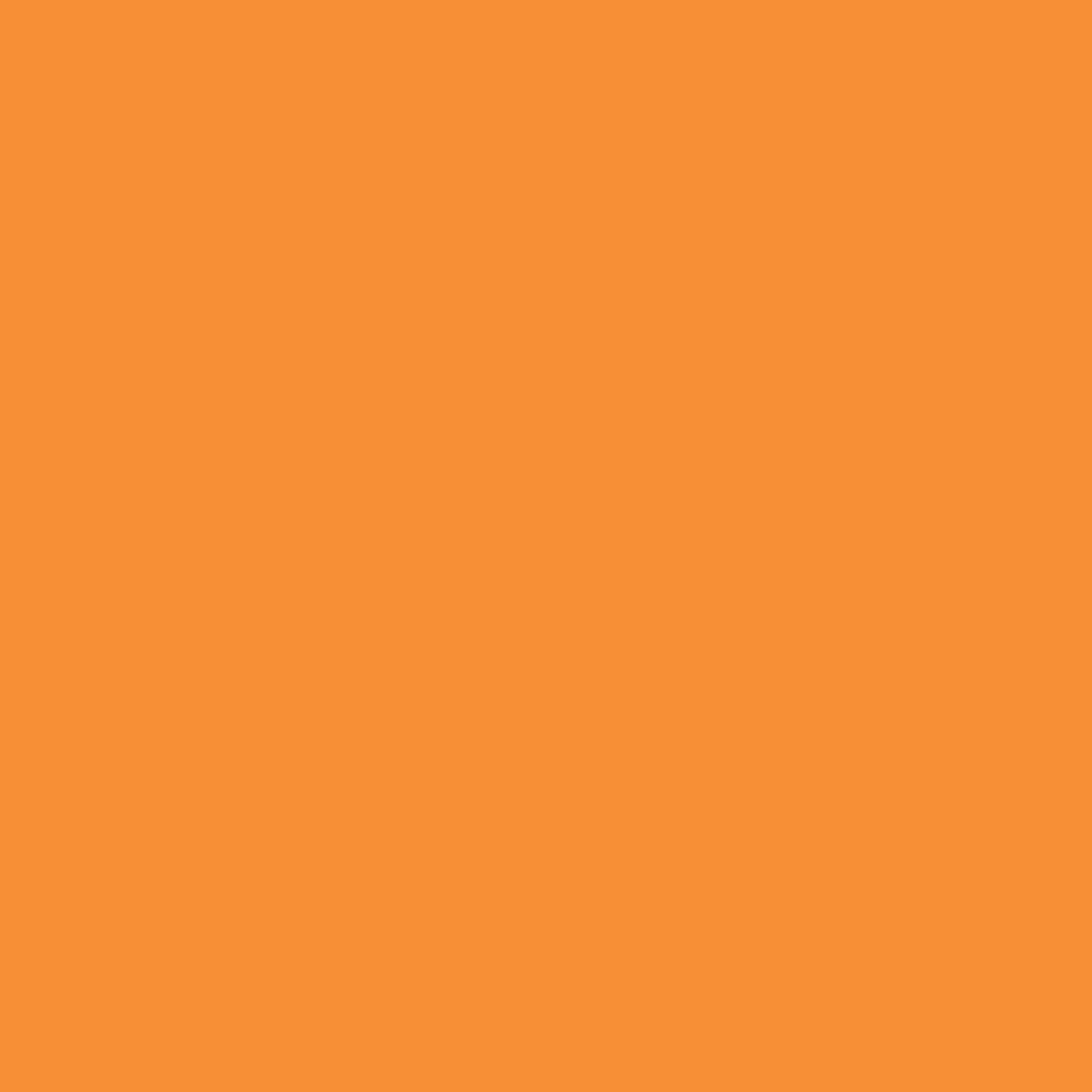 Бумага цветная А4 (21*29.7см): FOLIA Цветная бумага, 130г A4, охра, 1 лист в Шедевр, художественный салон
