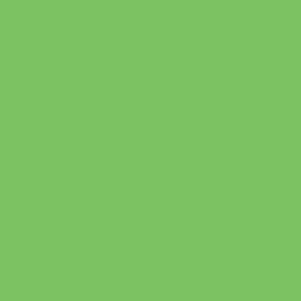 Бумага цветная А4 (21*29.7см): FOLIA Цветная бумага, 300г, A4, светло-зеленый, 1 лист в Шедевр, художественный салон