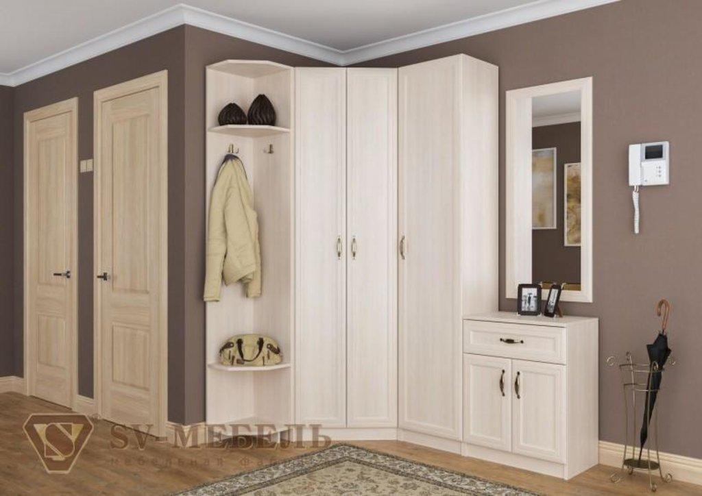 Мебель для гостиной Вега: Пенал ВМ-01 Вега в Диван Плюс