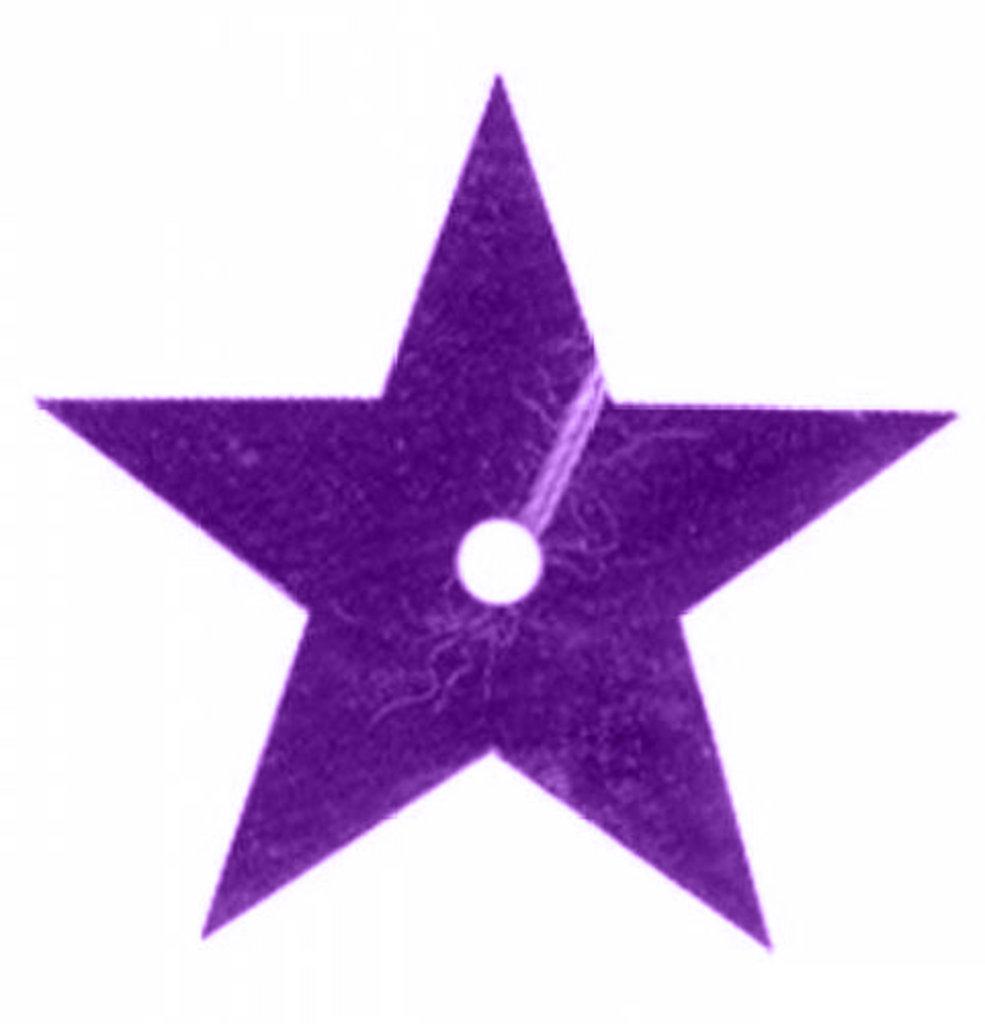 Звездочки: Пайетки звездочки,20мм.,упак/10гр.Астра(цвет:12 фиолетовый) в Редиант-НК