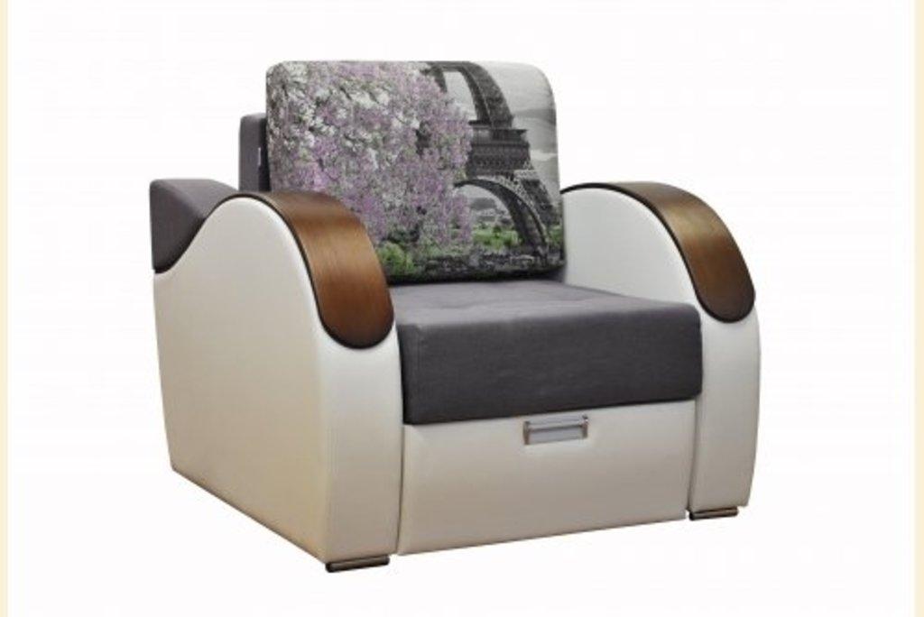Банкетки и кресла: Кресло-кровать Хьюстон в Диван Плюс