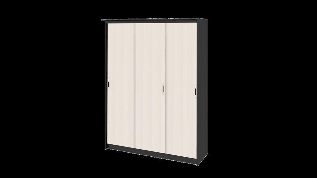 Шкафы-купе: Стэнли Лайт-1 в Студия Мебели