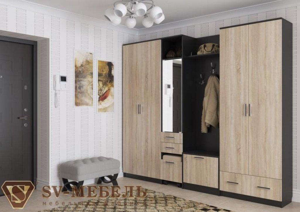 Мебель для прихожей Консул 2: Шкаф двухстворчатый Консул 2 в Диван Плюс