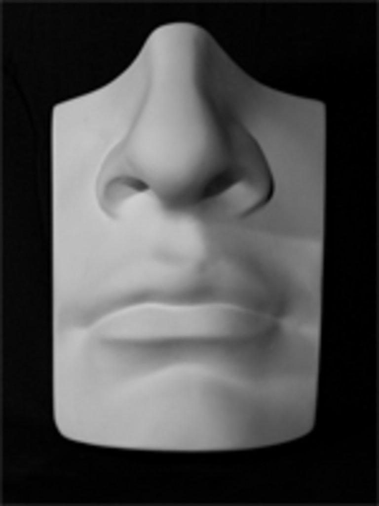 Гипсы: Нос с губами Давида в Шедевр, художественный салон