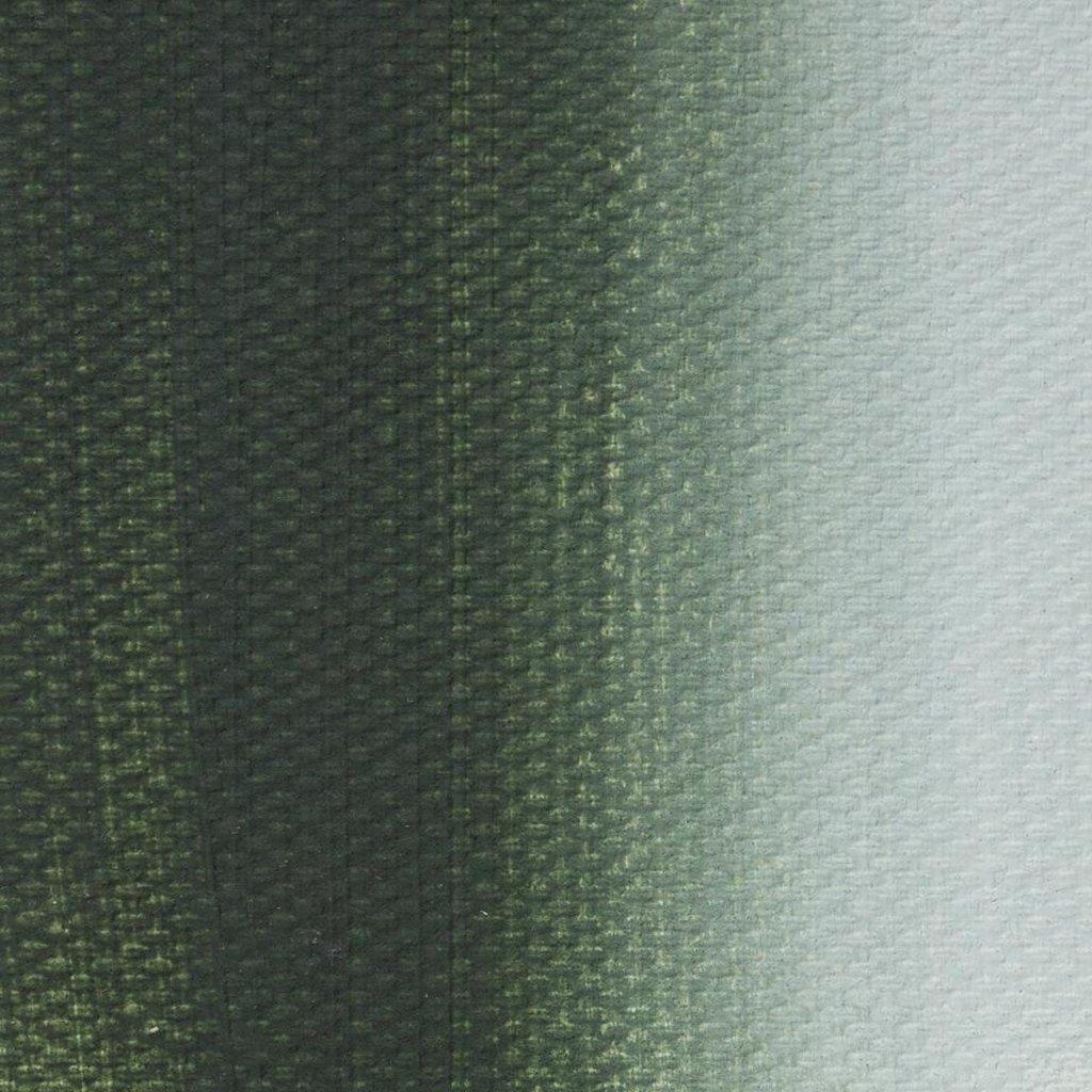 """МАСТЕР-КЛАСС: Краска масляная """"МАСТЕР-КЛАСС""""  волконскоит 46мл в Шедевр, художественный салон"""