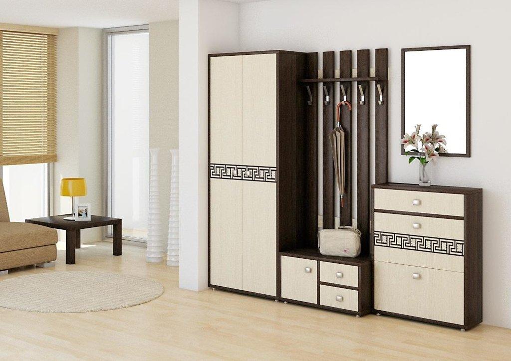 Мебель для прихожей Спарта. Модули: Тумба для обуви Спарта СП-02 в Диван Плюс