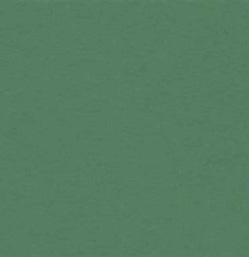 Бумага для пастели LANA: LANA Бумага для пастели,160г, 50х65,зелёный еловый, 1л. в Шедевр, художественный салон