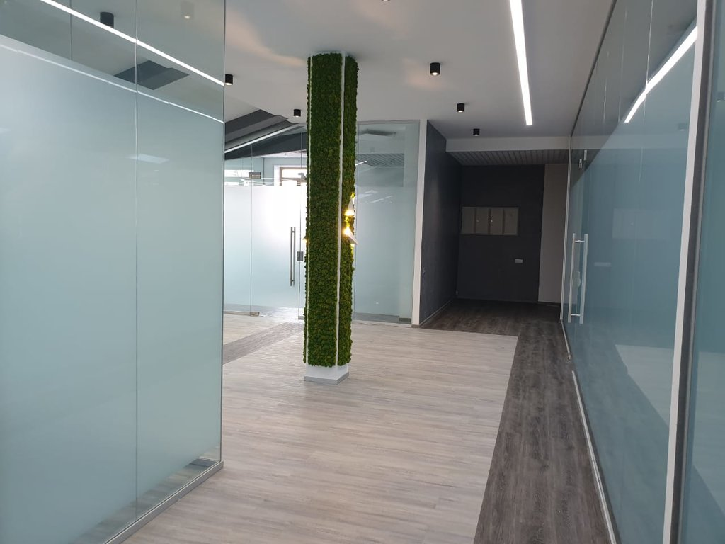 Перегородки для офиса и дома: Офисные перегородки цельностеклянные в Строймода СК, ООО
