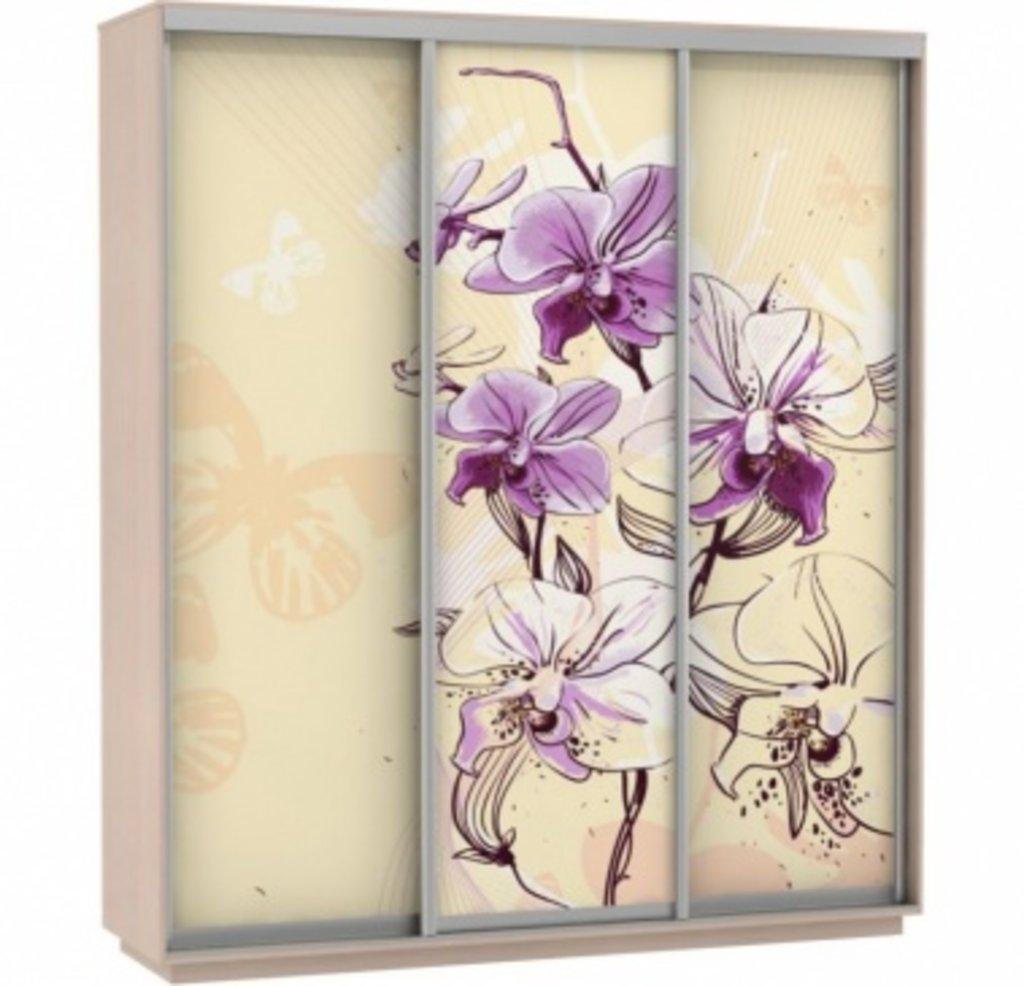 Шкафы купе: Фото ТРИО цветы в Ваша кухня в Туле