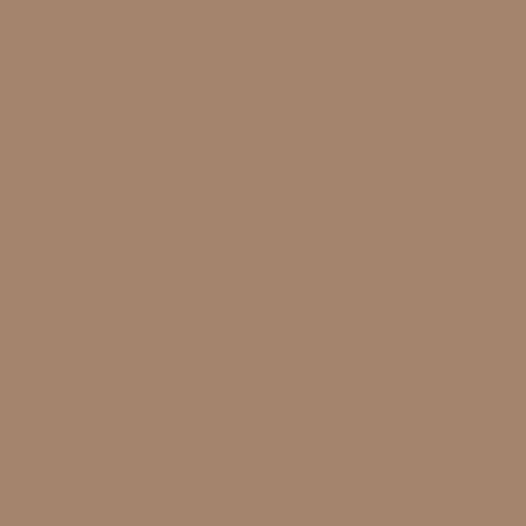 Бумага цветная А4 (21*29.7см): FOLIA Цветная бумага, 130г A4, светло-коричневый, 1 лист в Шедевр, художественный салон