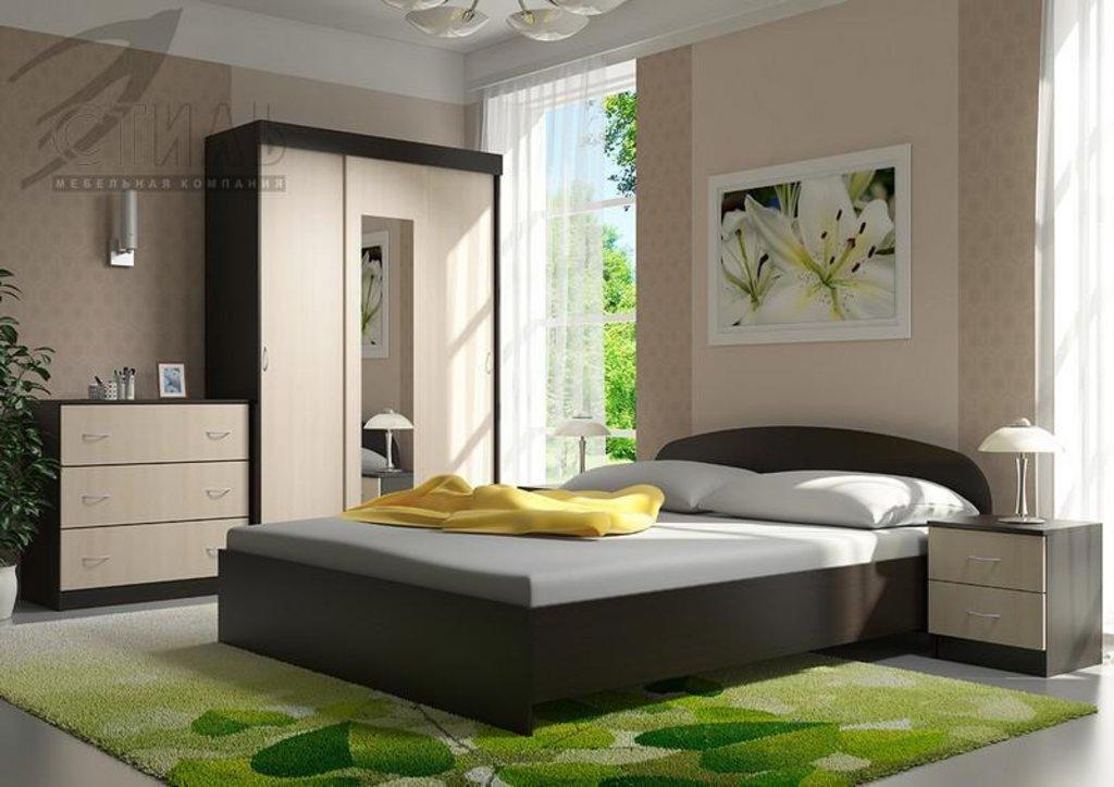 Мебель для спальни Рио-2: Шкаф купе Рио-2 в Диван Плюс