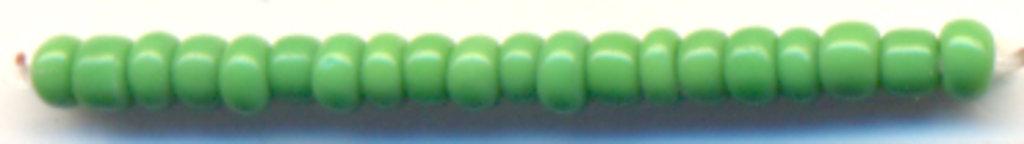 Бисер(стекло)11/0упак.500гр.Астра: Бисер(стекло)11/0,упак.500гр.,цвет 47(св.зеленый/непрозрачный) в Редиант-НК
