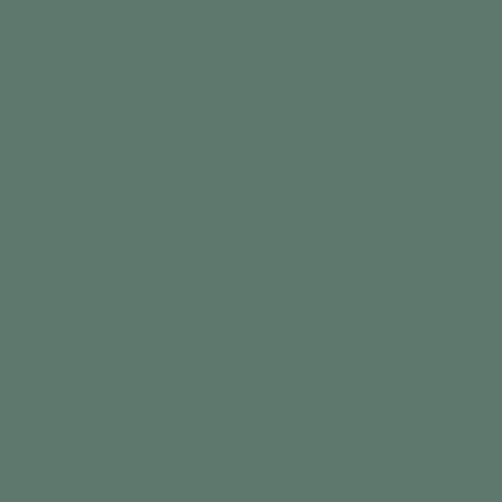 Бумага для пастели LANA: LANA Бумага для пастели,160г, 21х29,7, полынь, 1л. в Шедевр, художественный салон