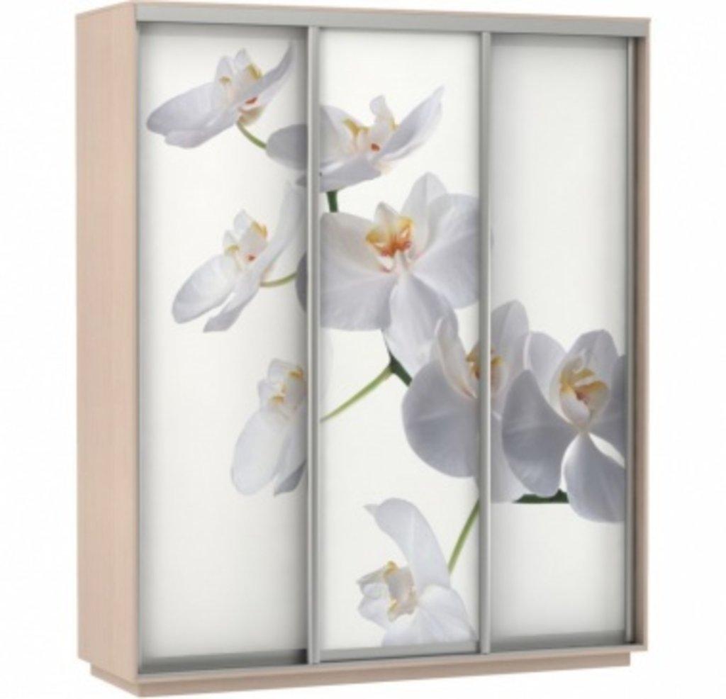 Шкафы купе: Фото  ТРИО Орхидея в Ваша кухня в Туле