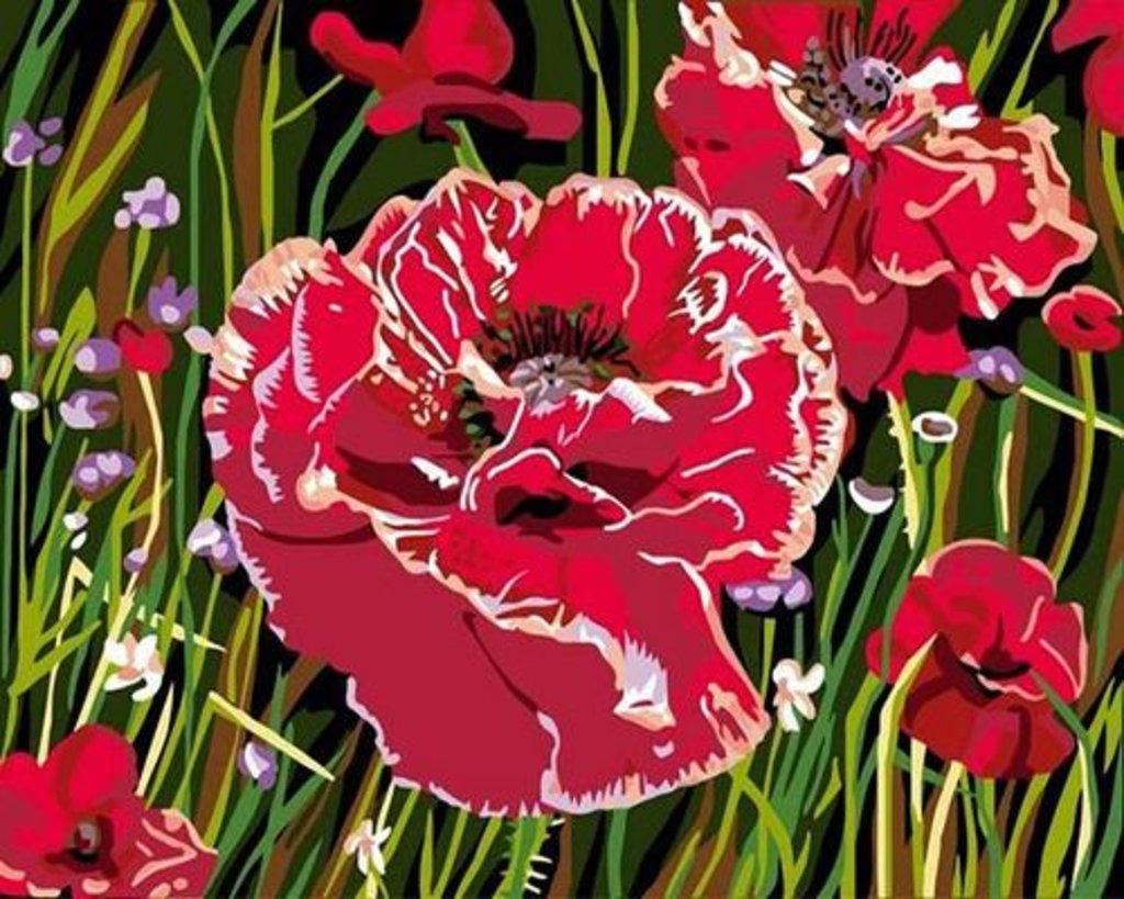 Картины по номерам: Картина по номерам Paintboy 20*30 CX3764 Маки в Шедевр, художественный салон