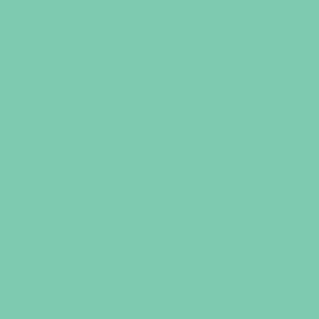 Бумага цветная А4 (21*29.7см): FOLIA Цветная бумага, 300г, A4, мята, 1 лист в Шедевр, художественный салон