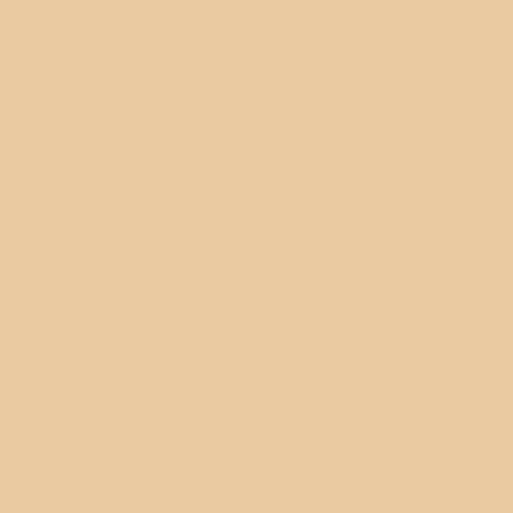 FOLIA Цветная бумага, 300г/м2 50х70,бежевый темный 1лист в Шедевр, художественный салон