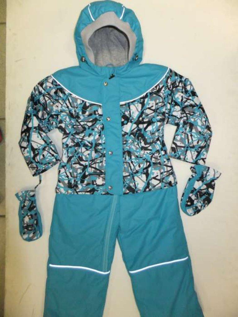 Верхняя одежда детская: Комбинезон Феникс 11-126 Весна в Чиполлино,  магазин детской одежды