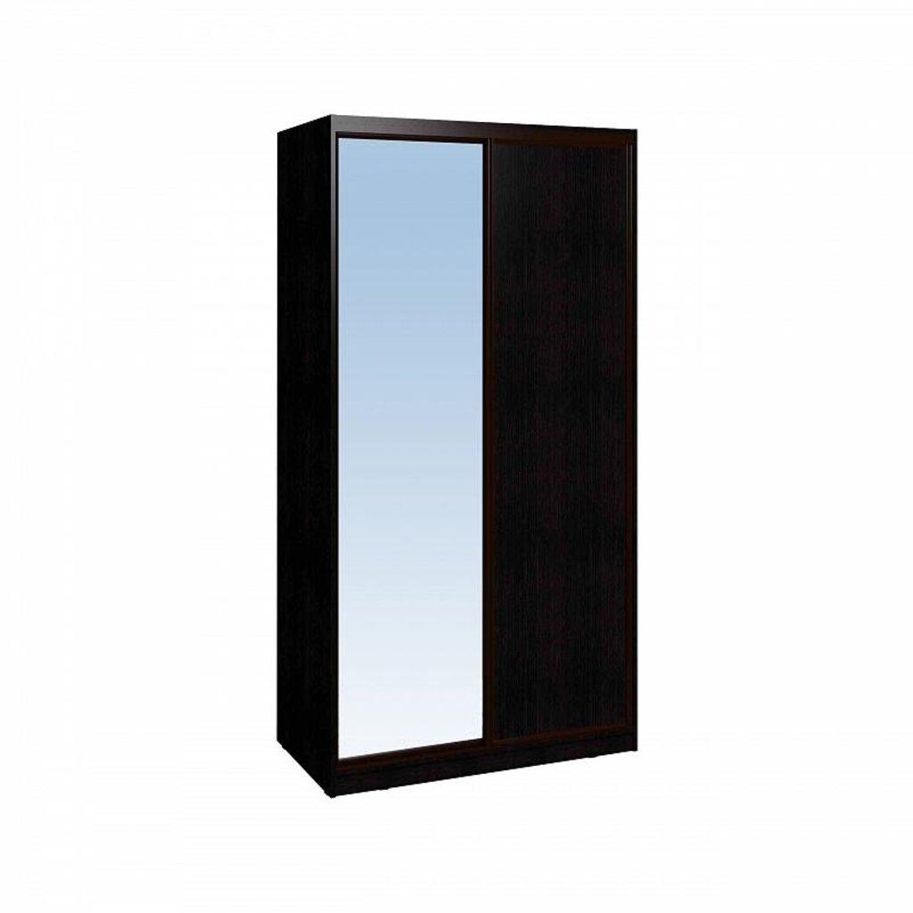 Шкафы купе: Шкаф-купе Домашний 303 в Стильная мебель