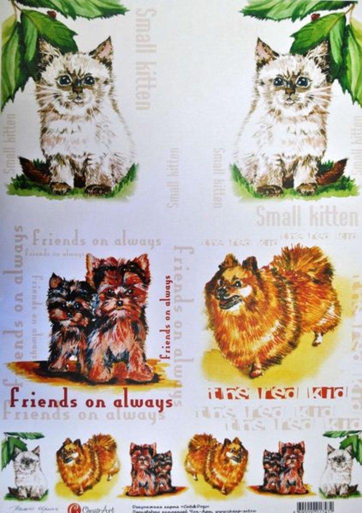 """Декупаж: Декупажная карта  """"Cats@Doqs"""" А3 1шт СН.01747 в Шедевр, художественный салон"""