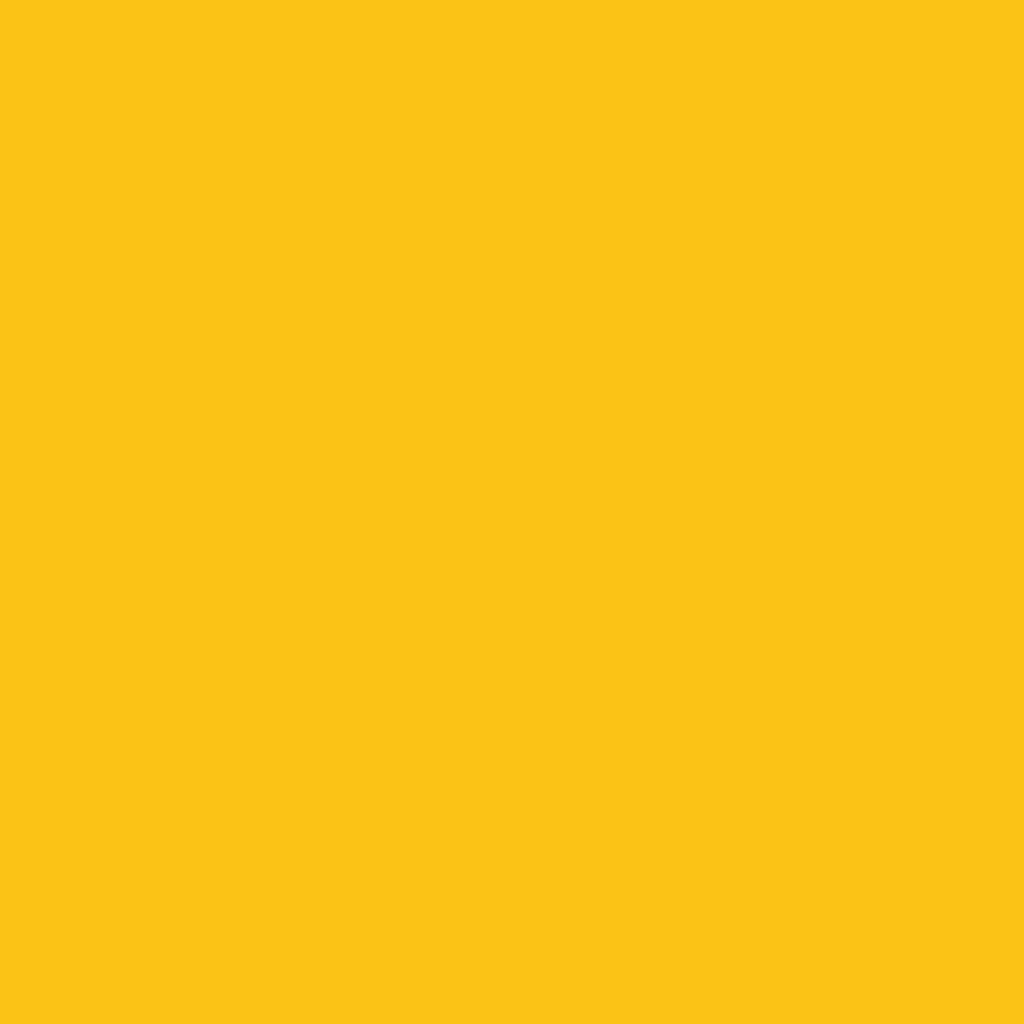 Бумага цветная 50*70см: FOLIA Цветная бумага, 300г/м2 50х70, жёлтый золотистый 1лист в Шедевр, художественный салон