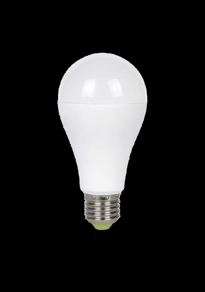 Светодиодные лампы: LED-А65-econom светодиодная лампа ASD в Электрика