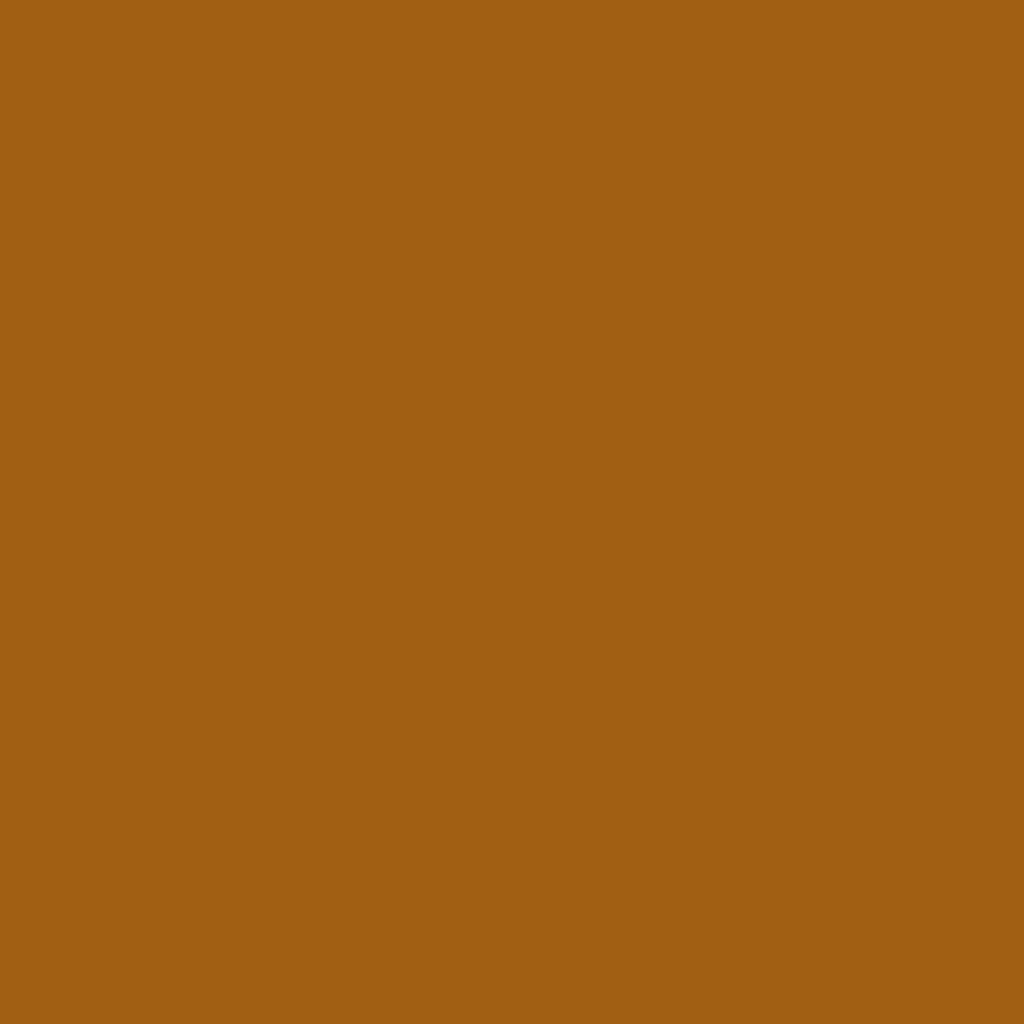 Бумага для пастели LANA: LANA Бумага для пастели,160г, 21х29,7, сиена, 1л. в Шедевр, художественный салон
