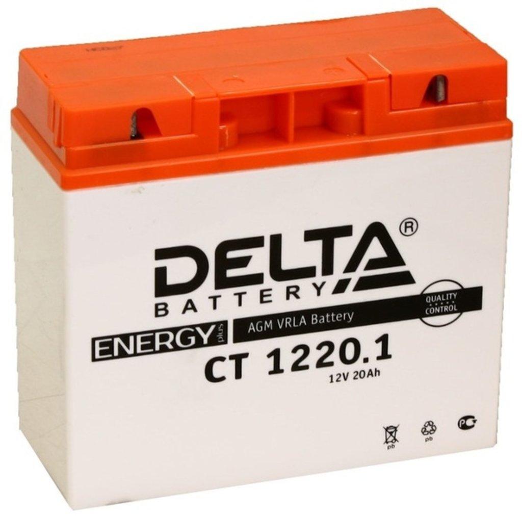 Delta: DELTA CT 1220.1 20Ah в БазаАКБ