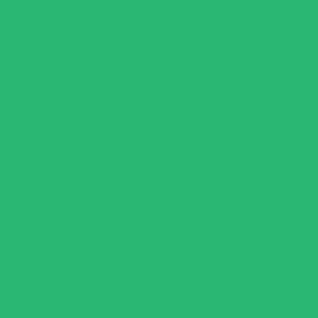 Бумага цветная 50*70см: FOLIA Цветная бумага, 130 гр/м2, 50х70см, зеленый изумруд, 1 лист в Шедевр, художественный салон