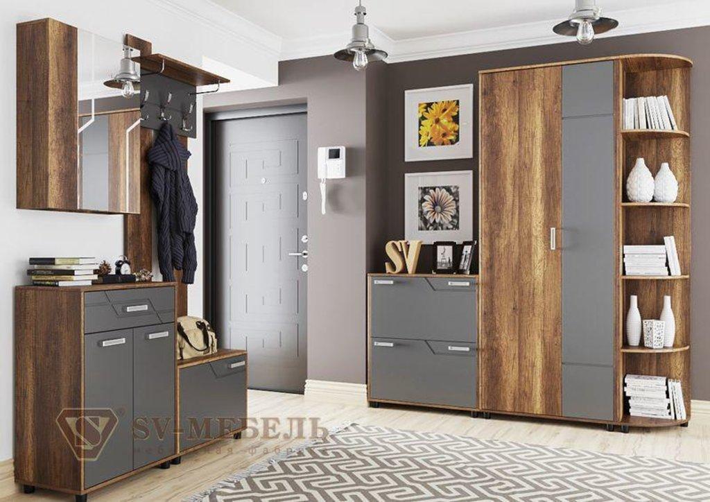 Мебель для прихожей Визит-1: Шкаф с зеркалом (навесной) Визит-1 в Диван Плюс