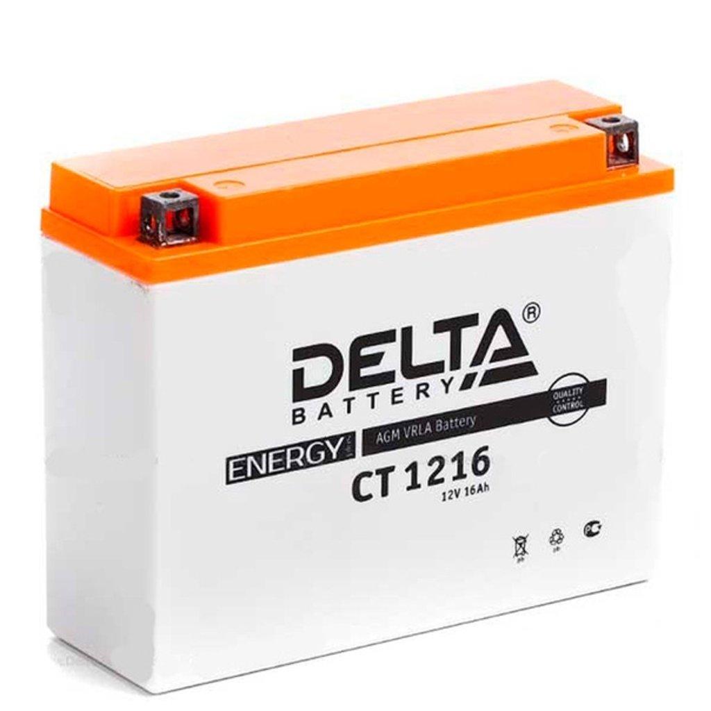 Delta: DELTA CT 1216 16 Ah в БазаАКБ