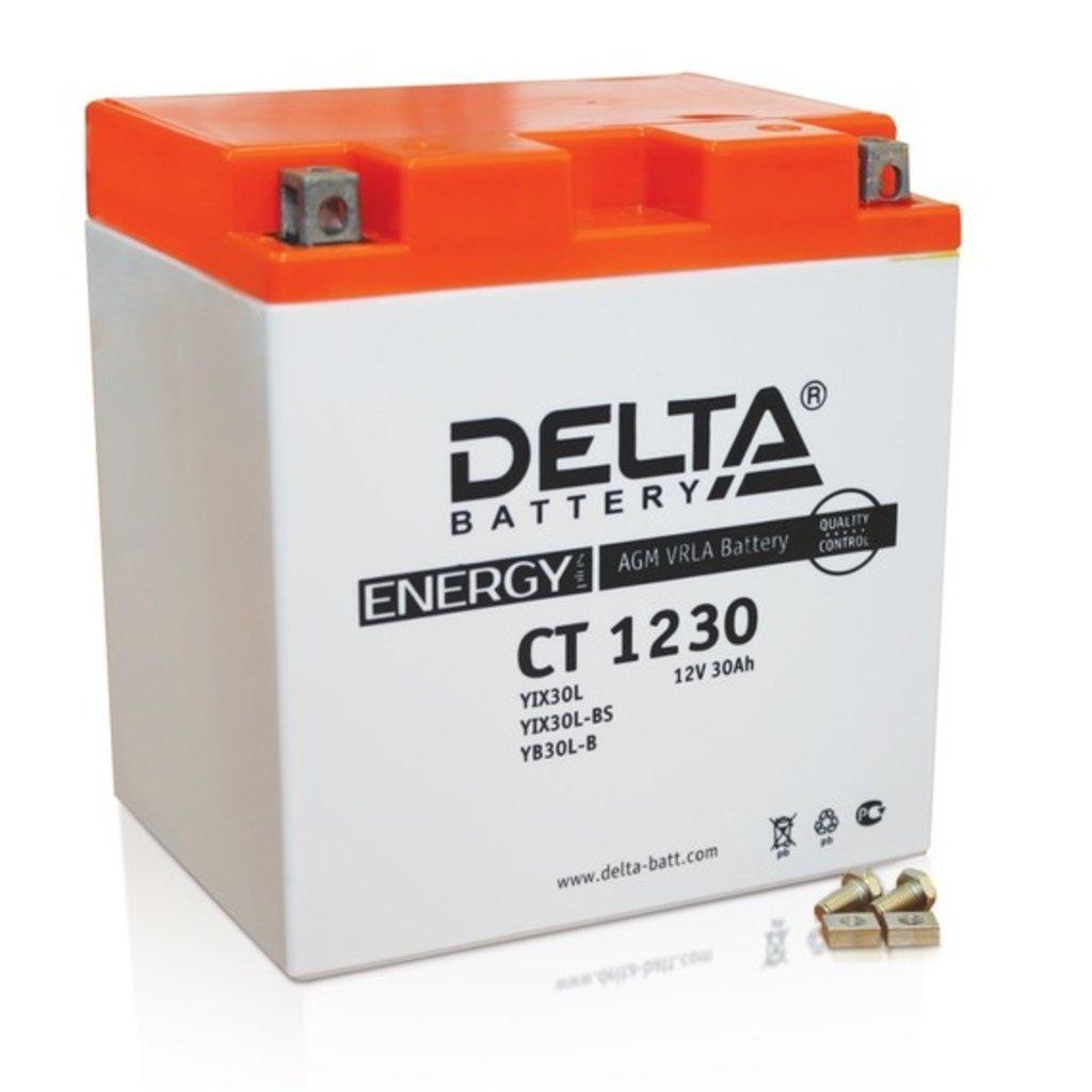 Delta: DELTA CT 1230 30Ah в БазаАКБ