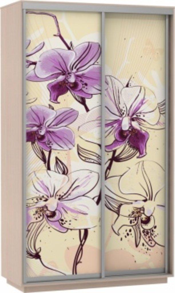 Шкафы купе: Фото ДУО Цветы в Ваша кухня в Туле