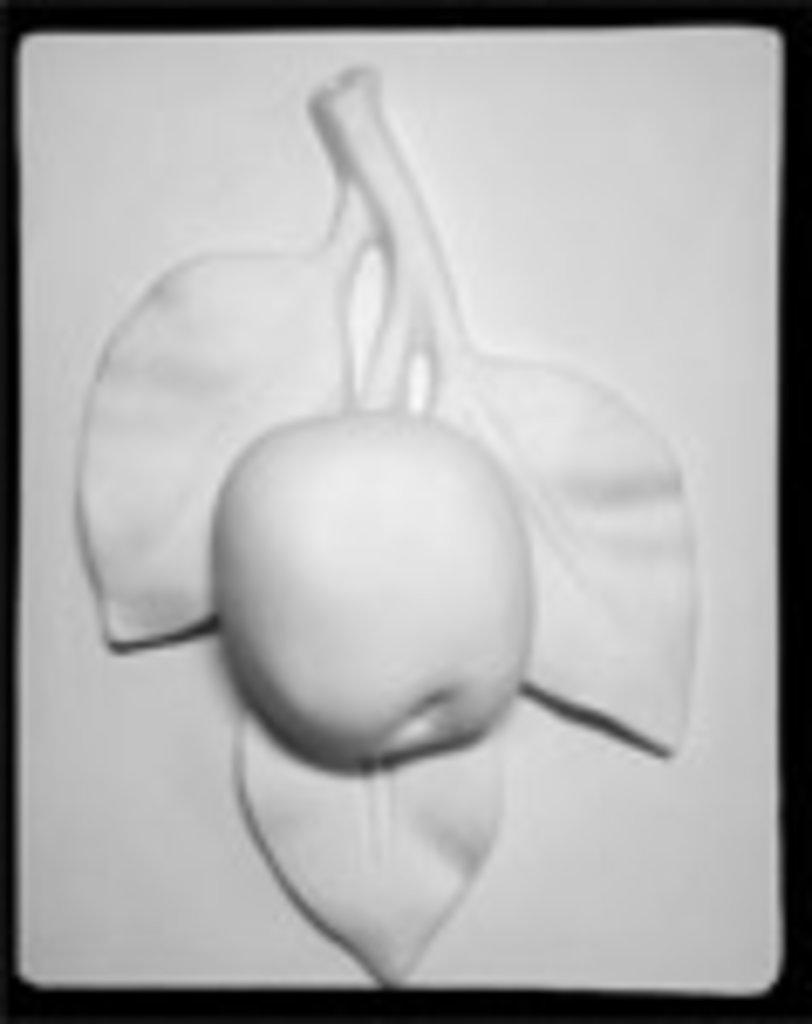 Гипсы: Орнамент, ветка яблони в Шедевр, художественный салон