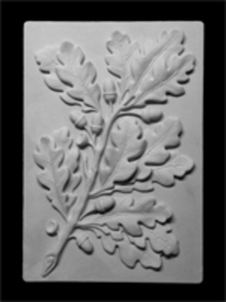Гипсы: Орнамент, ветка дуба, гипс в Шедевр, художественный салон