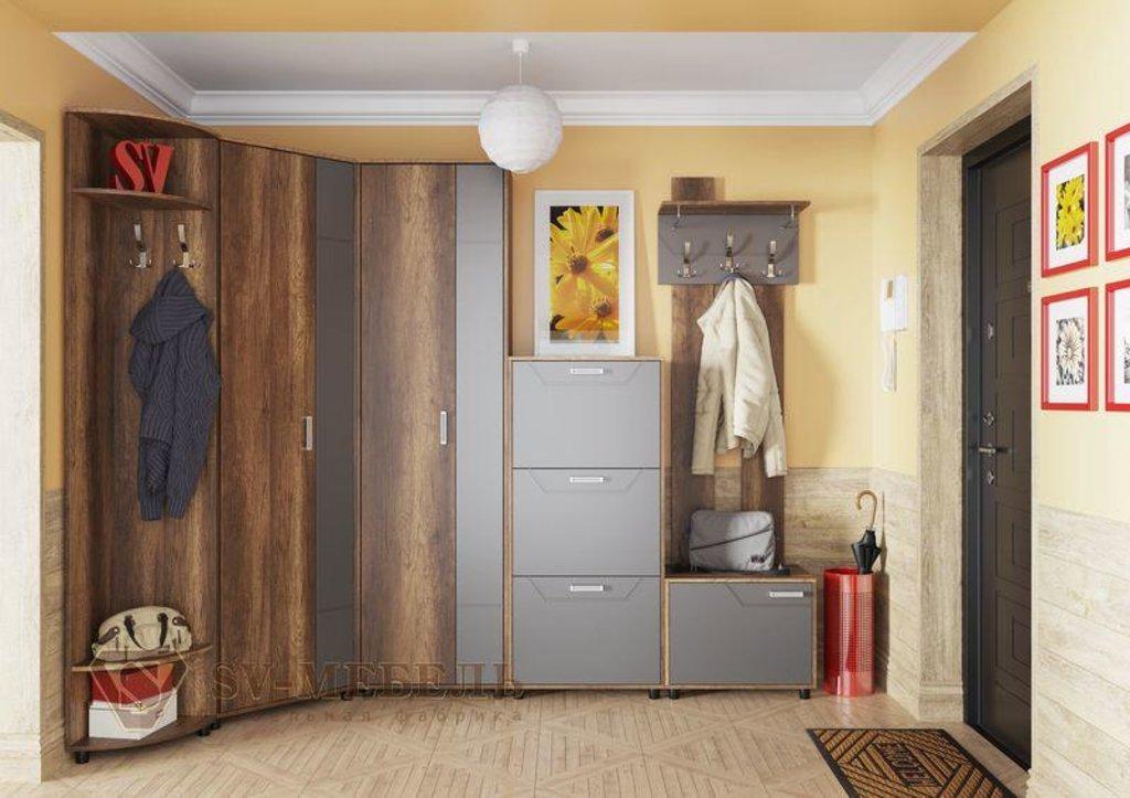 Мебель для прихожей Визит-1: Шкаф двухстворчатый Визит-1 в Диван Плюс