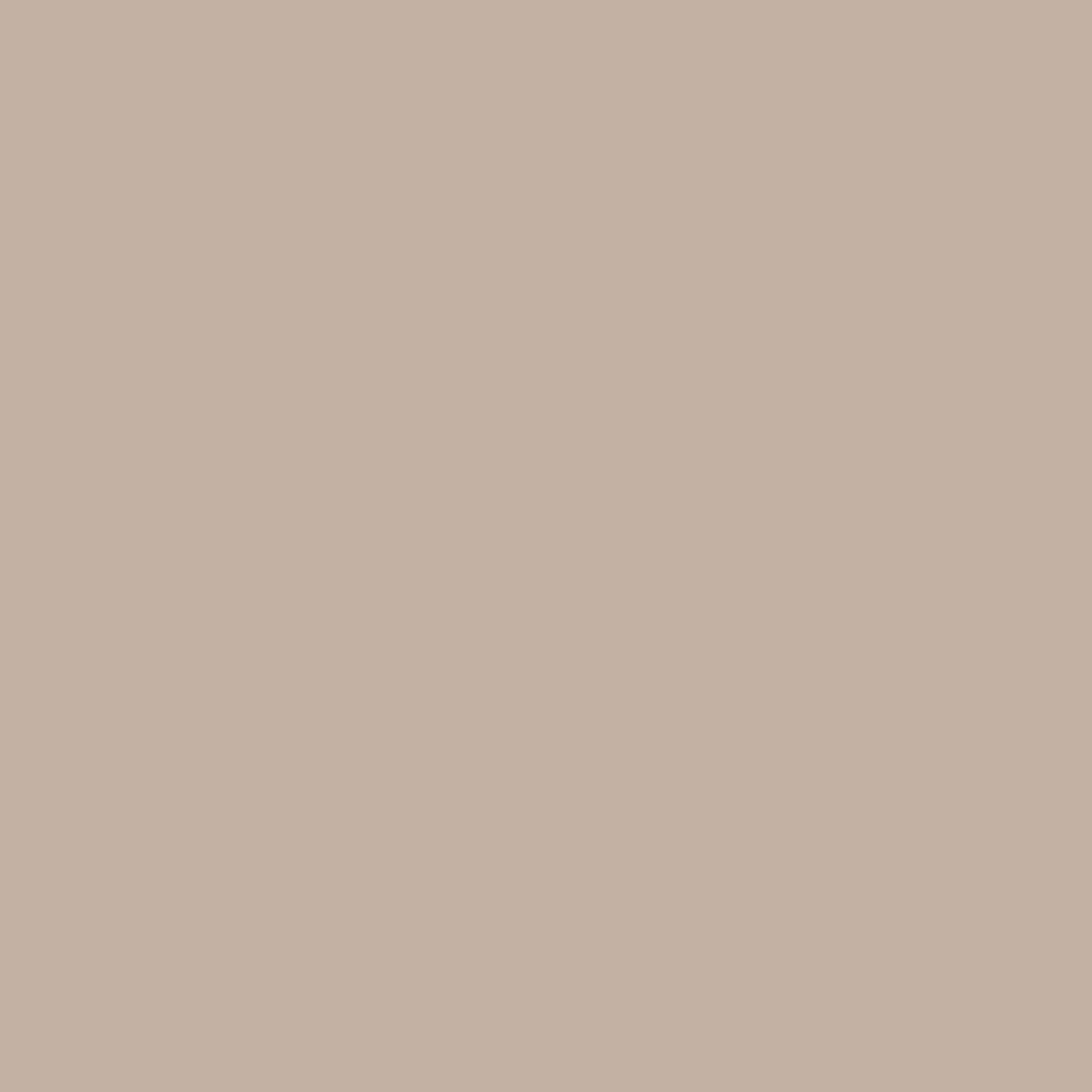 Бумага для пастели LANA: LANA Бумага для пастели,160г, 21х29,7, жемчужный, 1л. в Шедевр, художественный салон